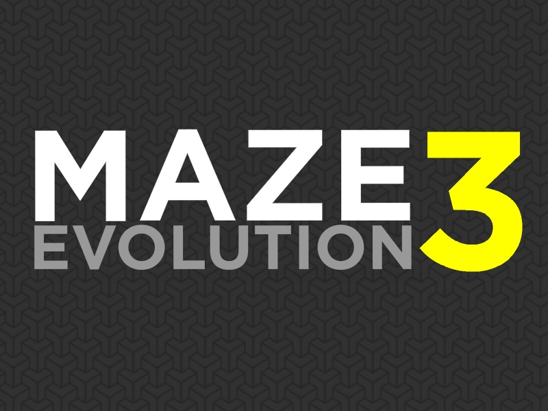 Maze Evolution 3 Game